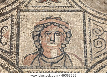 Ancient Roman Mosaic In Volubilis