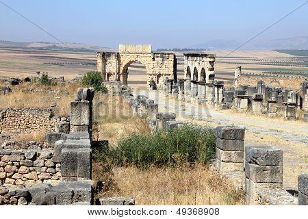 Roman Ruins In Volubilis, Morocco