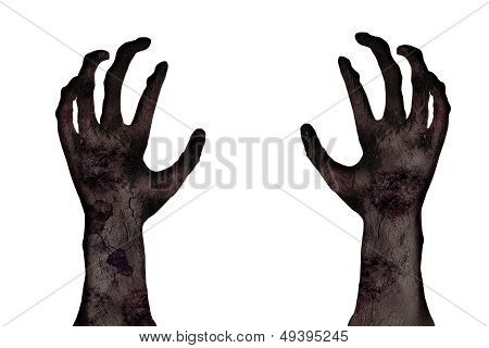 Close-up Hands Of Zombie On White