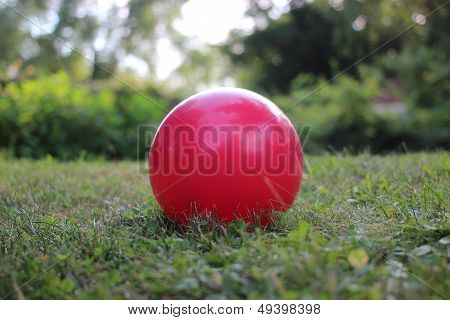 Bouncy ball in the grass