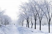 stock photo of weekdays  - Foggy wintry morning in Saint - JPG