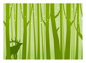 stock photo of antlers  - Deer in Forest Green - JPG