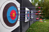 foto of archery  - The Picture Target archery and many arrow after shoot - JPG