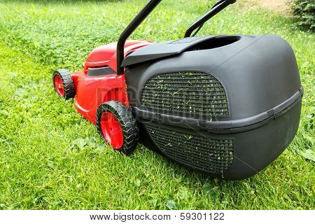 New Lawnmower On Green Grass