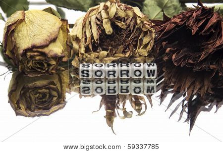 Sorrow Text With Old Flowers