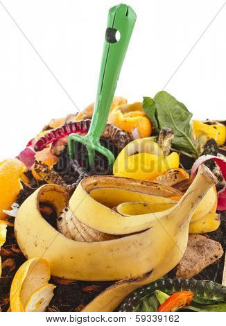 compost pile of kitchen scraps close up isolated on white background