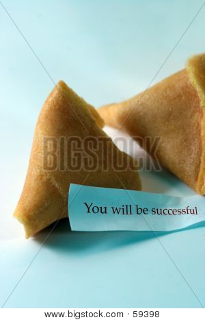 You Will Be Successful