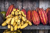 stock photo of guayaquil  - cocoa fruit on the counter of the Indian Latin America Fruit street market Ecuador - JPG