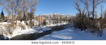 Panorama, Yampa River And Cottonwoods In Winter
