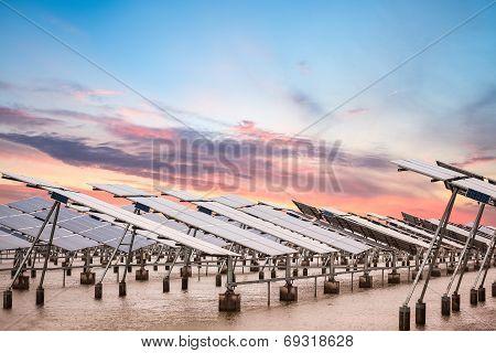 Solar Power Farm At Dusk