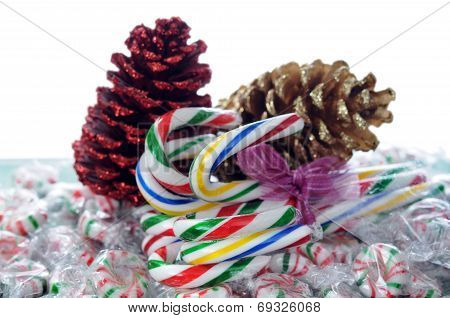 Canes Candy