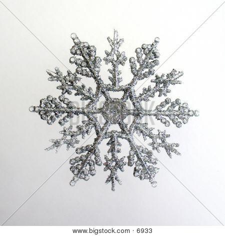 Silver Snowflake poster