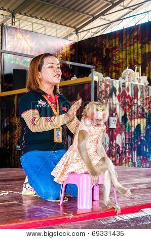 Monkey Show At Damnoen Saduak Floating Market, Thailand
