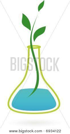 Green Medicine Picture