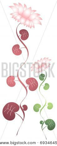 pink lotus  with leaves