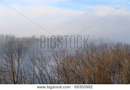 Autumn Fog On The River