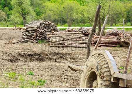 Old Trailer And Logs
