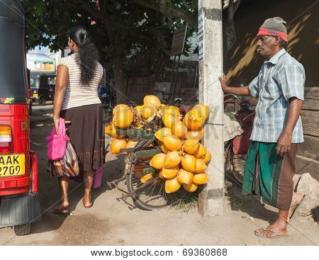 HIKKADUWA, SRI LANKA - MARCH 9, 2014: Local man selling coconuts on his bike on street. Coconuts milk is the best way to quench your thirst in the day heat.