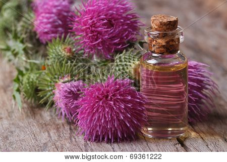 Oil Of Burdock Close-up On A Table