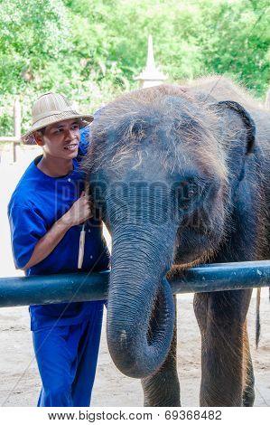 Mahout and his elephant at Samphran Elephant Ground & Zoo in Nakhon Pathom Thailand.