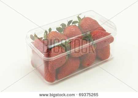 Perfect strawberries packaged ready to be soled isolated on white background