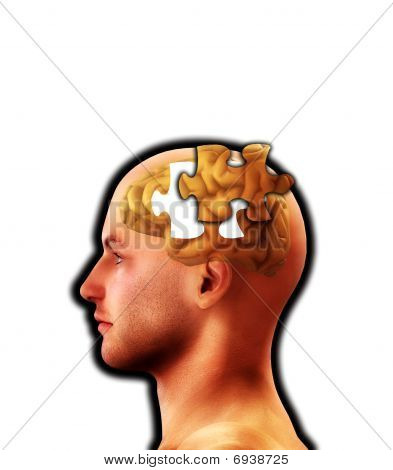 The Puzzle Of Mind Lost