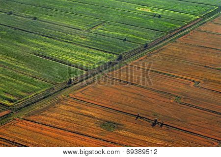 Aerial view of the cultivated land