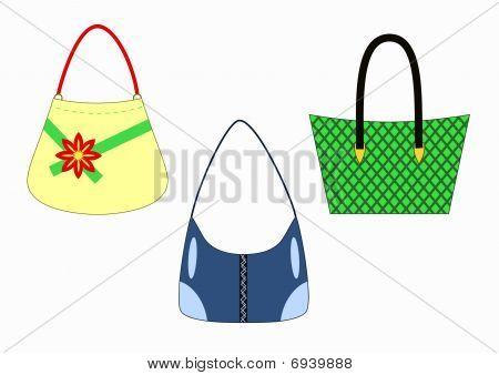 vector stylish female handbags isolated on white