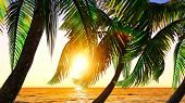 picture of pacific islands  - Paradise on Hawaii Island with awesome skyscape - JPG