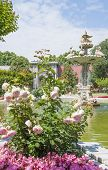 picture of opulence  - Ornate carved swan fountain in pond of formal gardens at Dolmabahce Palace Istanbul Turkey - JPG