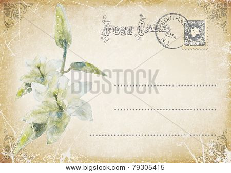 vintage grunge postcard with flower.vector illustration