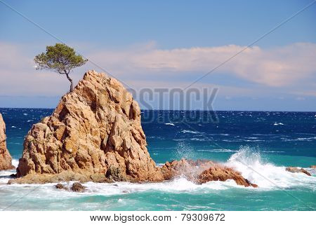 Islet over rough sea