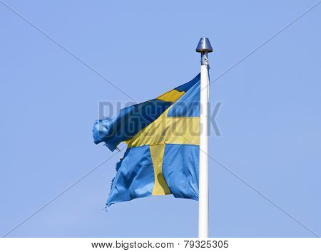A frayed, well-worn Swedish Standard in the wind.