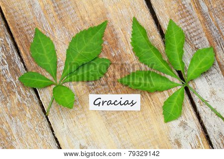 Gracias card (which means thank you in Spanish) with two green leaves on rustic wooden surface