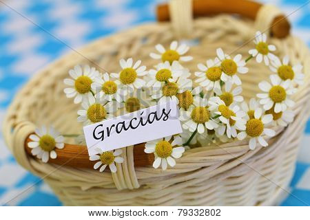Gracias card (which means thank you in Spanish) with chamomile flowers in wicker basket