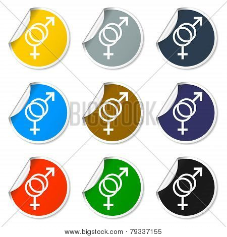 Male And Female Sex Symbol - Vector Illustration