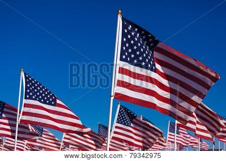 A displayy of American flags with a sky blue background