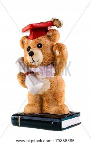 Phd Teddy Bear
