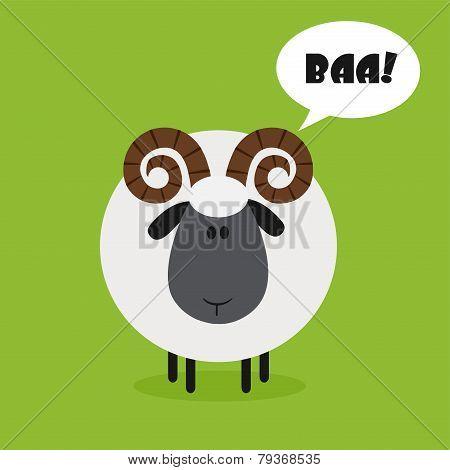 Cute Ram Sheep