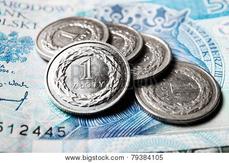 Polish Zloty Coins, Close Up