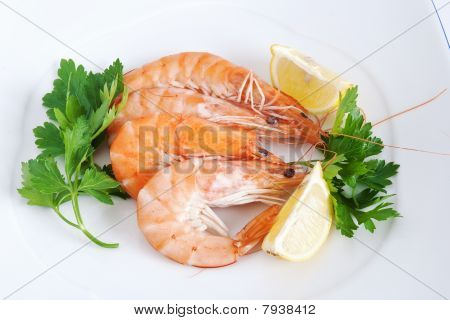 Plate With Shrimps Closeup