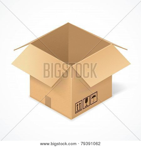 Opened cardboard box, isolated on white