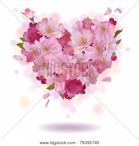 Cherry petal heart isolated on the white background