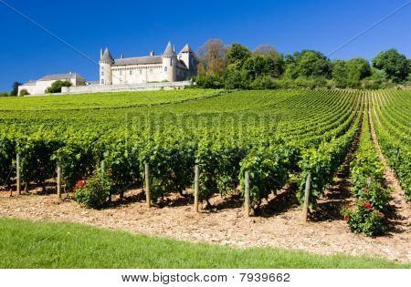 Chateau de Rully with vineyards Burgundy France