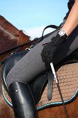 stock photo of saddle-horse  - Close up of rider in saddle on chestnut horse - JPG