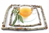 picture of clary  - Colorful and crisp image of sage tea - JPG