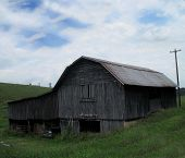 Old weathered grey barn poster