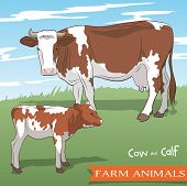 stock photo of calves  - color vector illustration of a cow and her calf grazing in the meadow - JPG
