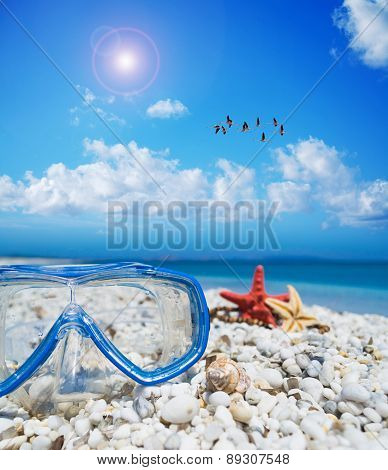 Diving Mask And Starfish Under A Flock Of Flamingos