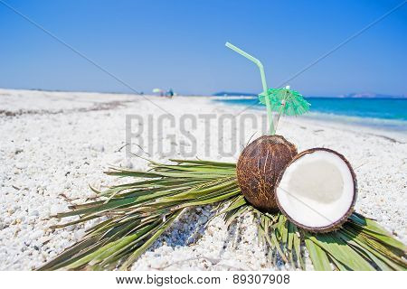 Coconuts And Palm Branches On White Pebbles
